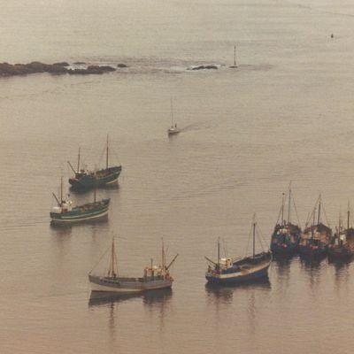Shows - Estuary Tales